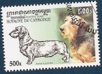Stamps of the world : Cambodia :  Perros de raza - Teckel de pelo duro