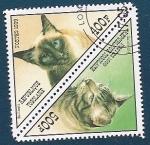 Sellos del Mundo : Africa : Togo :  Gato California y  Gato Balinés