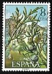 de Europa - España -  Flora - Sabina albar