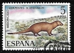Sellos de Europa - España -  Fauna Hispánica - Meloncillo