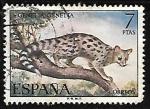 Sellos de Europa - España -  Fauna Hispánica - Gineta