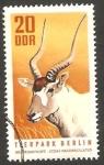 Sellos del Mundo : Europa : Alemania :  1310 - Zoo de Berlin, antilope