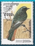 Stamps Cambodia -  AVES - Colirrojo real