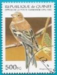 Stamps Guinea -  AVES - Pinzón vulgar