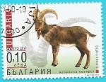 Sellos de Europa - Bulgaria -  Ibice o cabra salvaje de los Alpes