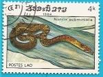 Stamps of the world : Laos :  Natrix subminiata - keelback de cuello rojo