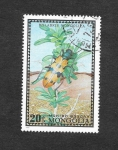 Stamps : Asia : Mongolia :  668 - Escarabajo