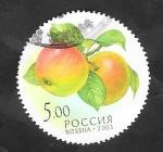 Sellos del Mundo : Europa : Rusia : 6751 - Manzanas