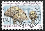 Stamps of the world : Spain :  Micologia - Matacandelas