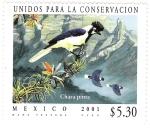 Sellos de America - México -  Unidos Para la Conservacion