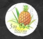 Stamps : Europe : Russia :  6747 - Piña