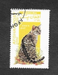 Stamps  -  -  GATOS