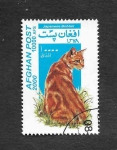 Stamps : Asia : Afghanistan :  Gato