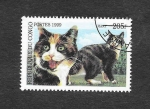 Stamps : Africa : Republic_of_the_Congo :  Gato