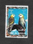Sellos del Mundo : Asia : Emiratos_Árabes_Unidos : Mi1254A - Aves