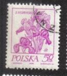 Stamps Poland -  Dibujos florales de Wyspianski, Iris