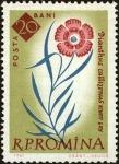 Stamps : Europe : Romania :  Centenario de los jardines botánicos de Bucarest,Piatra Craiului rosa (Dianthus callizonus)
