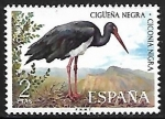Stamps : Europe : Spain :  Fauna Hispánica - Cigüeña Negra