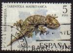 Sellos de Europa - España -  ESPAÑA 1974 2194 Sello Fauna Hispanica Salamanquesa Usado