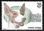 Sellos de Europa - España -  Perros de raza española - Podenco Ibicenco