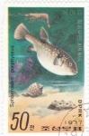 Stamps : Asia : North_Korea :  Pez