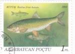 Stamps : Asia : Azerbaijan :  Peces