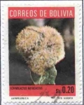 Stamps of the world : Bolivia :  Flora boliviana - Cactus