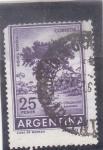 Sellos de America - Argentina -  RIQUEZA FORESTAL