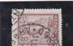 de America - Argentina -  LLAMA