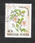 Sellos del Mundo : Europa : Hungría : 2240 - Flora