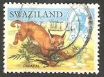 Sellos del Mundo : Africa : Swazilandia : Lince