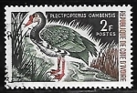 Sellos del Mundo : Africa : Costa_de_Marfil : Spur-winged Goose  ganso