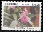 Sellos del Mundo : America : Honduras : Flores