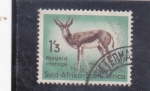 Stamps of the world : South Africa :  GACELA