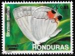 Sellos del Mundo : America : Honduras : Mariposas. Strymon melinus