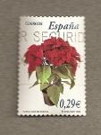 Stamps Spain -  Flor de Pascua