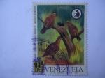 Stamps Venezuela -  Conserve los Recursos Renovables-Venezuela los Necesita - Codorniz Jaspeada-odontophorus gujanensis