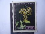 Stamps Venezuela -  Oncidium Bicolor Lindl - Epidendrum Atropureum