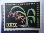 Stamps : America : Venezuela :  Catasetum Callosum Lindl - Orquídea.