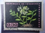 Sellos de America - Venezuela -  Masdevallia Tovarensis - Epidendrum Difforme Jacq.