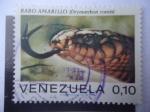 Sellos de America - Venezuela -  Rabo Amarillo  - Serpiente Índigo (Drymarchon Coral)