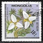 Stamps Mongolia -  Potaninia mongolica