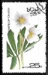Sellos de Asia - Omán -  Heliborus