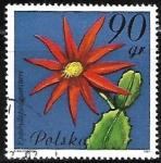 Sellos de Europa - Polonia -  Cactaceae