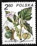 Sellos de Europa - Polonia -  Datura innoxia