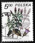 Stamps : Europe : Poland :  Mentha piperita