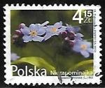 Sellos de Europa - Polonia -  Myosotis arvensis