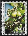 Stamps of the world : Comoros :  Cashews