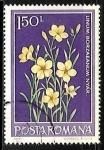 Stamps : Europe : Romania :  Linum pallasianum subsp