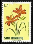 Stamps San Marino -  Day lily
